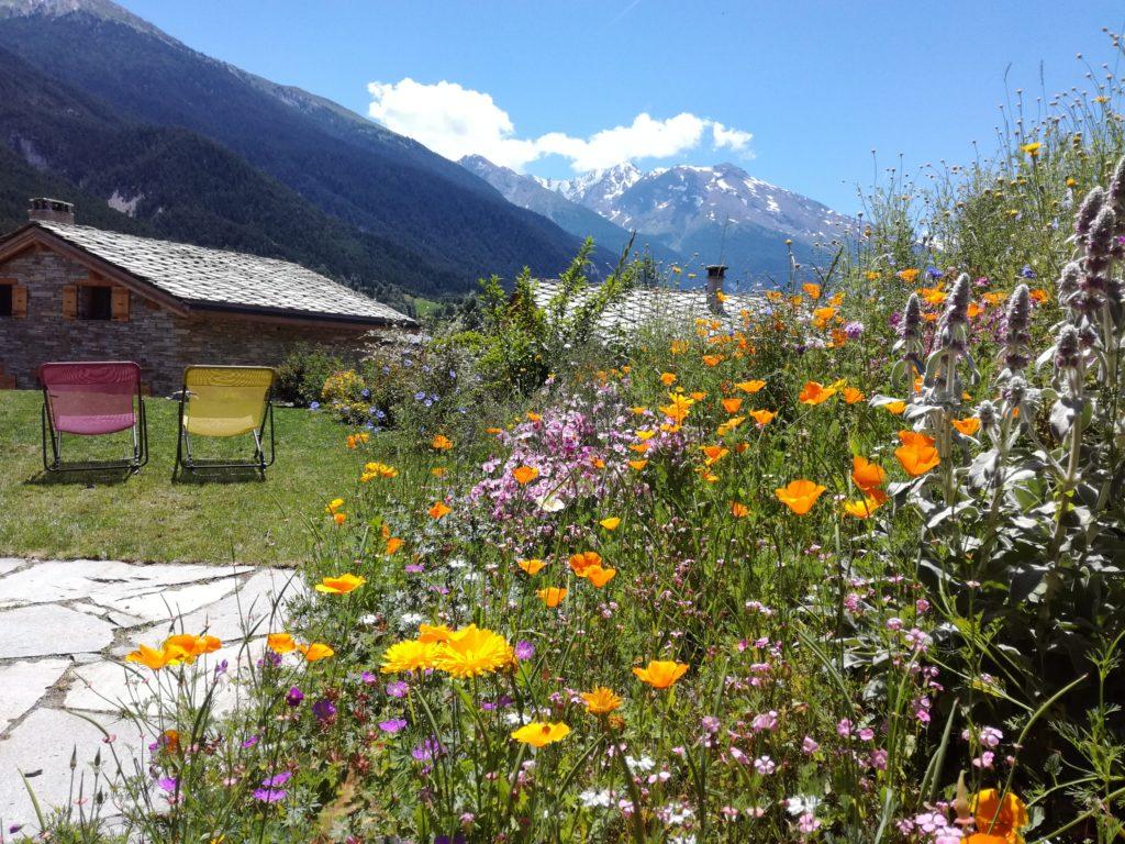 Le jardin fleuri, avec vue sur les montagnes
